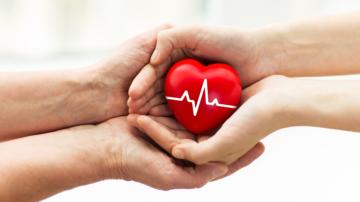nueva-vida-dia-mundial-del-trasplante imágen de artículo
