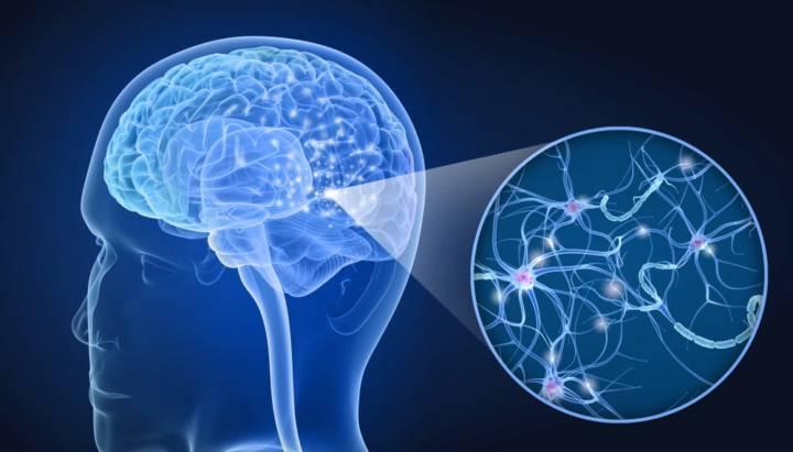 dia-mundial-de-la-esclerosis-multiple article image