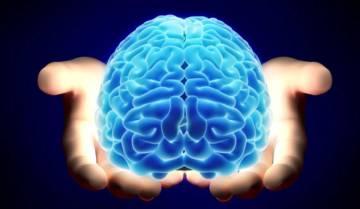 el-cacao-para-la-salud-neurologica imágen de artículo