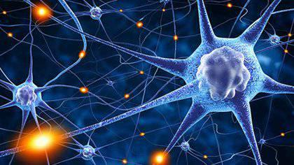 dia-internacional-de-la-epilepsia-lo-que-debe-saber imágen de artículo