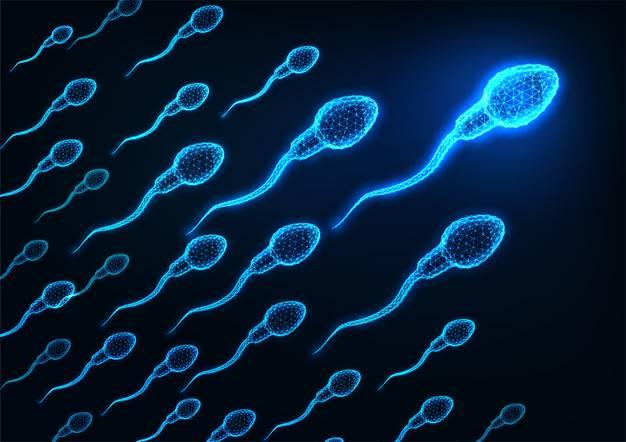la-varicocele-como-un-paso-a-la-infertilidad imágen de artículo