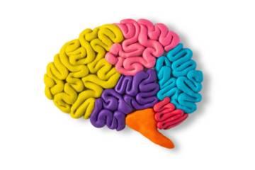 datos-importantes-sobre-la-encefalitis imágen de artículo