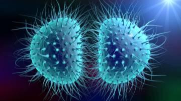 deteccion-oportuna-de-gonorrea-y-clamidia imágen de artículo