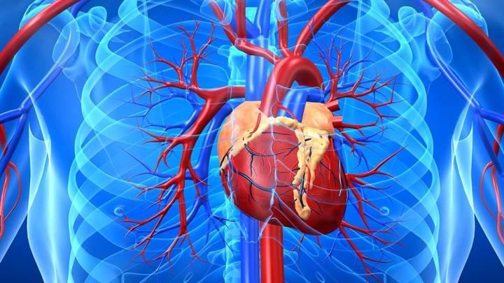 diez-consejos-para-cuidar-el-corazon article image