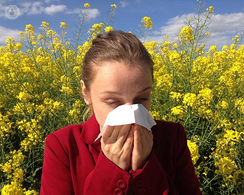 las-alergias-mas-frecuentes