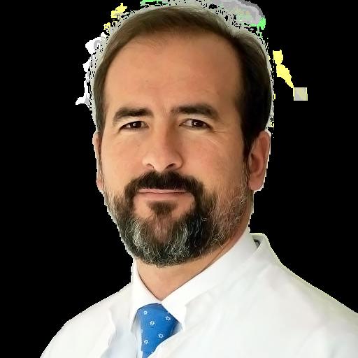 Dr Cristián Schauvinhold